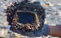 Потерянный в Тайване фотоаппарат за два года проплыл 250 км и все еще работает