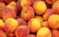 Крымские супермаркеты обманывают покупателей, выдавая импортные фрукты за местные