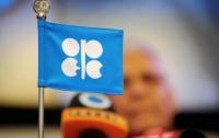 ОПЕК ожидает рост спроса на нефть в мире на 16%