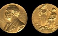 Нобелевская премия по медицине досталась клеточным биологам