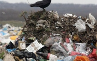 Мэр Львова призвал Киев объявить в городе чрезвычайную экологическую ситуацию