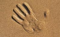 Мужчину насмерть засыпало песком в Черниговской области