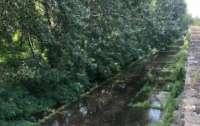 Днепр оказался под водой: город затоплен