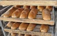 В Україні може подорожчати хліб через ціни на електроенергію та газ
