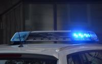 В Ужгороде водитель подрался с полицейскими (видео)