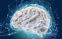 Исследователи обнаружили еще одну способность мозга