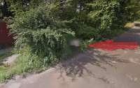 Google Maps увековечили мужчину, который справлял нужду в кустах