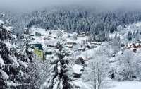 Львовскую область засыпало снегом (видео)