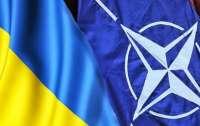 Украина начинает военные учение совместные с НАТО