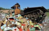 В России уничтожили почти 800 тонн еды