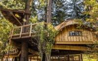 Microsoft построила для сотрудников офисы на деревьях