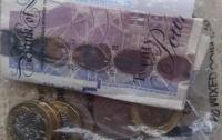 Кот-клептоман впервые принес хозяйке деньги