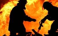 Сильный пожар унес жизни людей в Донецкой области