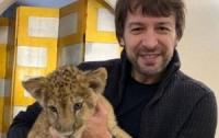 Украинский футболист рискует быть съеденным львом (видео)