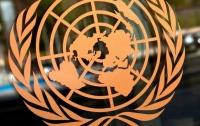 В ООН призвали Украину наполнить Раду женщинами