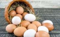 Яйца в стране подорожали из-за НАБУ