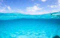 Неизвестные водные хищники искусали австралийского подростка