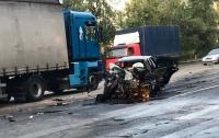 В лобовом столкновении под Киевом погибли люди