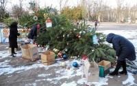 В Киевской области упала 12-метровая новогодняя елка
