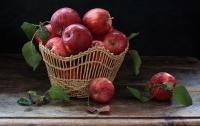 Украина поставила рекорд по экспорту яблок в Евросоюз