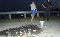 На Львовщине на браконьерстве поймали двух полицейских