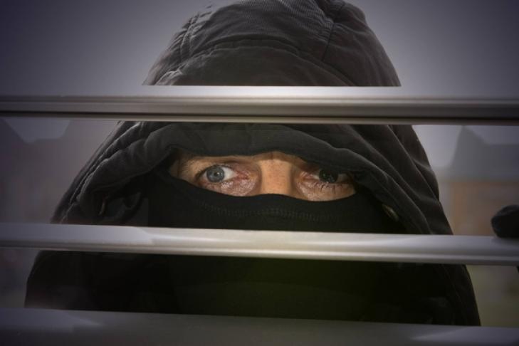 Жители России  впервую очередь  становятся подозреваемыми вшпионаже вГермании,— МВД