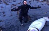 На берег Новой Зеландии вынесло огромного кальмара (ФОТО)