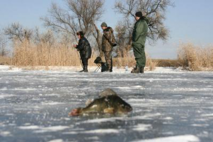 рыбалка на реке кальмиус видео