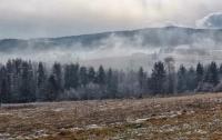 Погода в Украине: В сентябре ударят заморозки