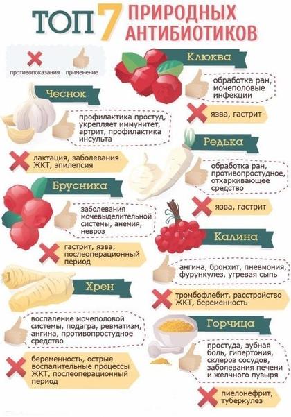 Вылечить простуду без антибиотиков