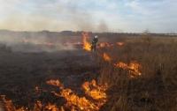 До конца недели в Украине сохранится чрезвычайная пожароопасность
