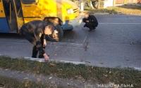В Одесской области автобус сбил семилетнего мальчика