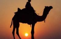 Бедуины обокрали засекреченный военный объект в Израиле