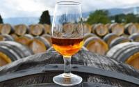 Ученые рассказали о способности вина продлить жизнь