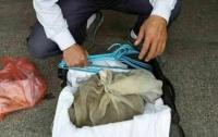 Китаец пытался сесть в поезд с 50 гадюками в чемодане