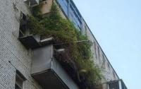 Самые странные балконы, способные развеселить каждого (ФОТО)