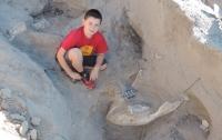 В Нью-Мексико ребенок нашел останки древнего стегомастодона