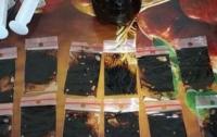 В Херсонской области изъяли наркотиков на 600 тысяч