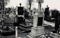 Мистическая связь: во Львовской области нашли роженицу, закопавшую младенца на кладбище