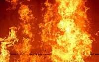 В большом пожаре погиб человек