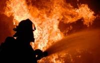 В Киеве произошел пожар в офисе: здание сгорело дотла (видео)