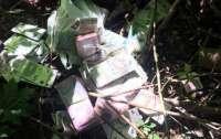 Под Ровно грабители рассыпали в лесу миллион гривен