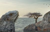 Найдено самое крупное вымершее существо на Земле