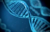 В ДНК человека нашли следы древнего вымершего вируса