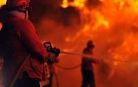 Взрыв в торговом центре в России: десять детей получили ожоги (видео)