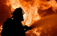 На Донбассе произошел пожар на складе боеприпасов, пострадали военные