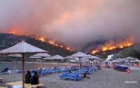 Установлены личности 76 погибших в результате лесных пожаров в Греции