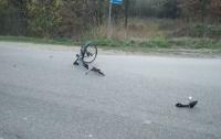 Возле Львова в ДТП погибли мотоциклист и велосипедист